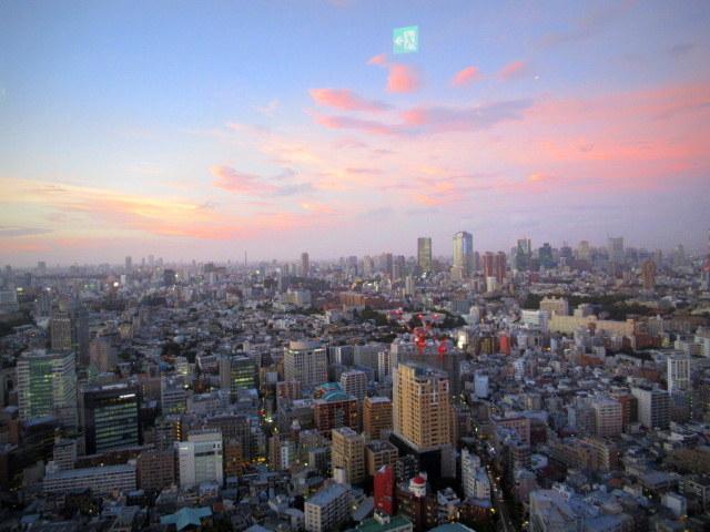Longrain TOKYO/ロングレイン東京 * 絶景のタイレストラン @恵比寿_f0236260_03480552.jpg