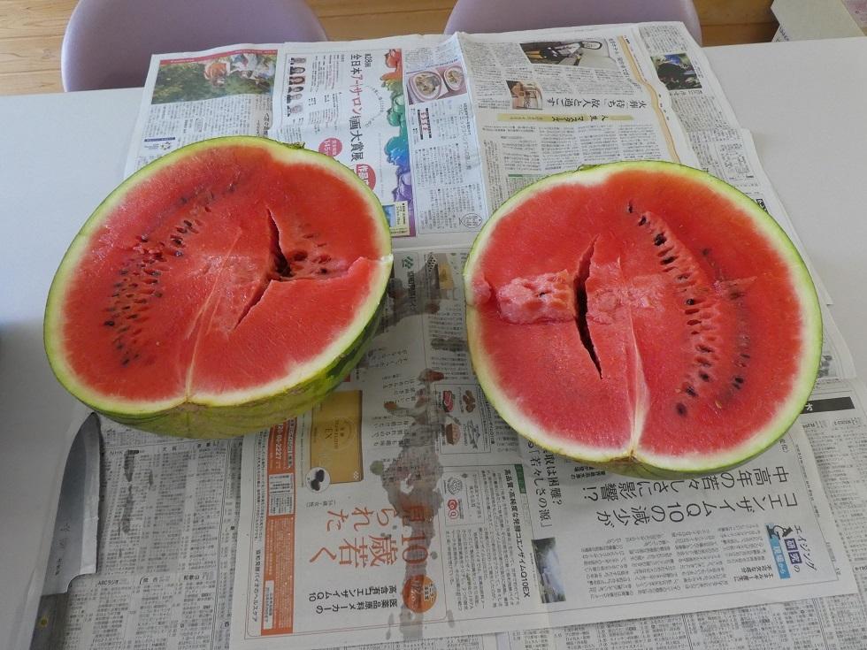 夏の味 スイカ_f0205367_08551588.jpg