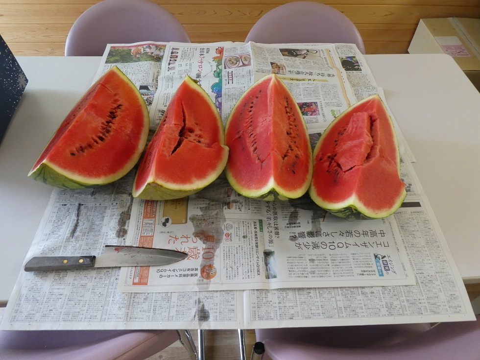 夏の味 スイカ_f0205367_08584134.jpg
