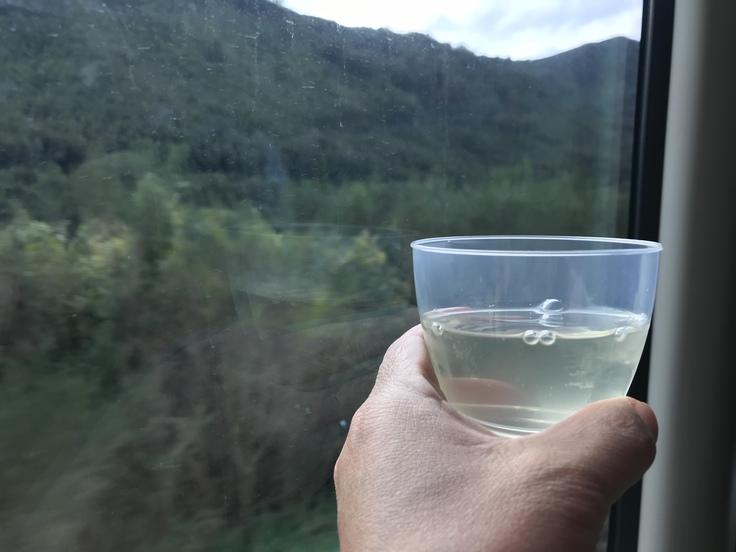 冬のニュージーランド旅(27)トランツアルパインでクライストチャーチに戻ります(飲み鉄Part2)_c0212604_21423320.jpg