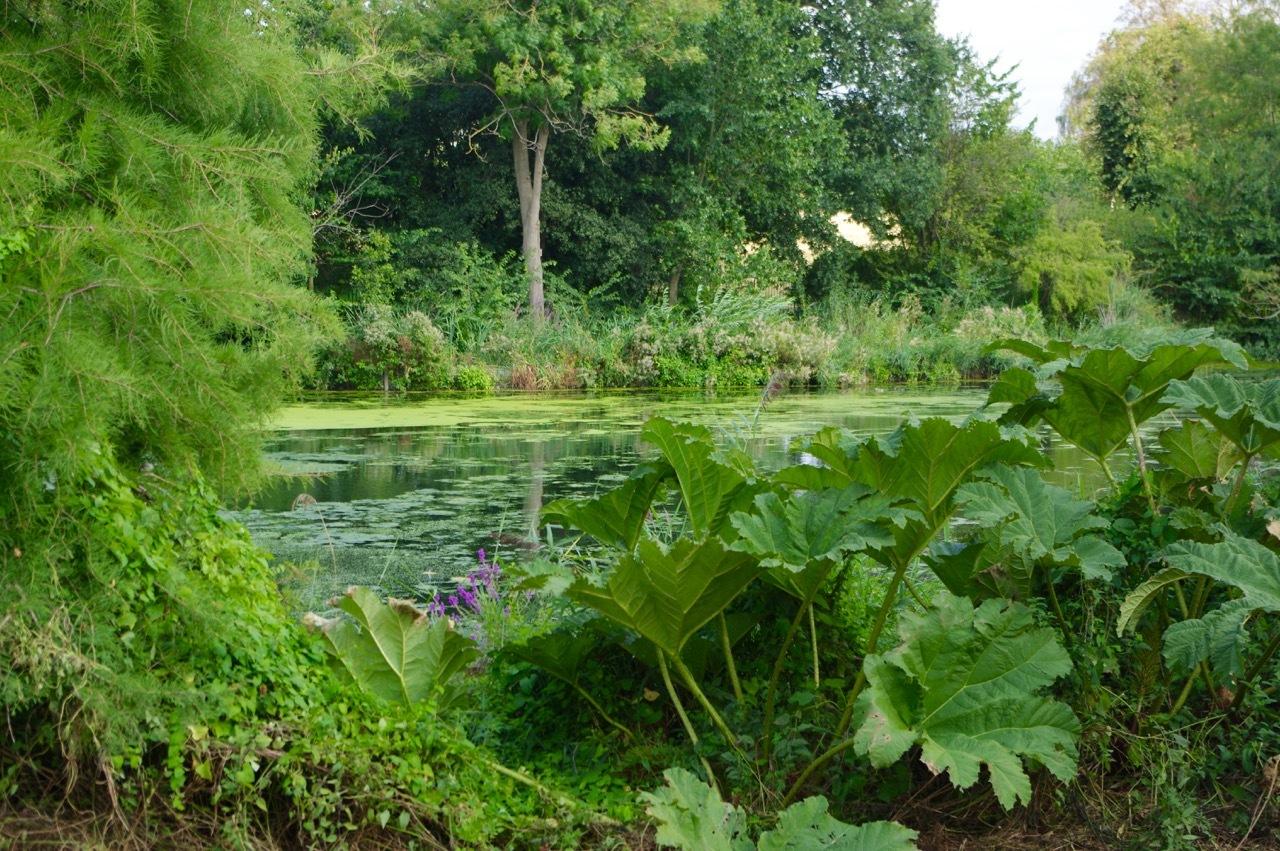 楽しみ盛りだくさん、土曜日のケンジントン・ガーデンズ_e0114020_17070667.jpg