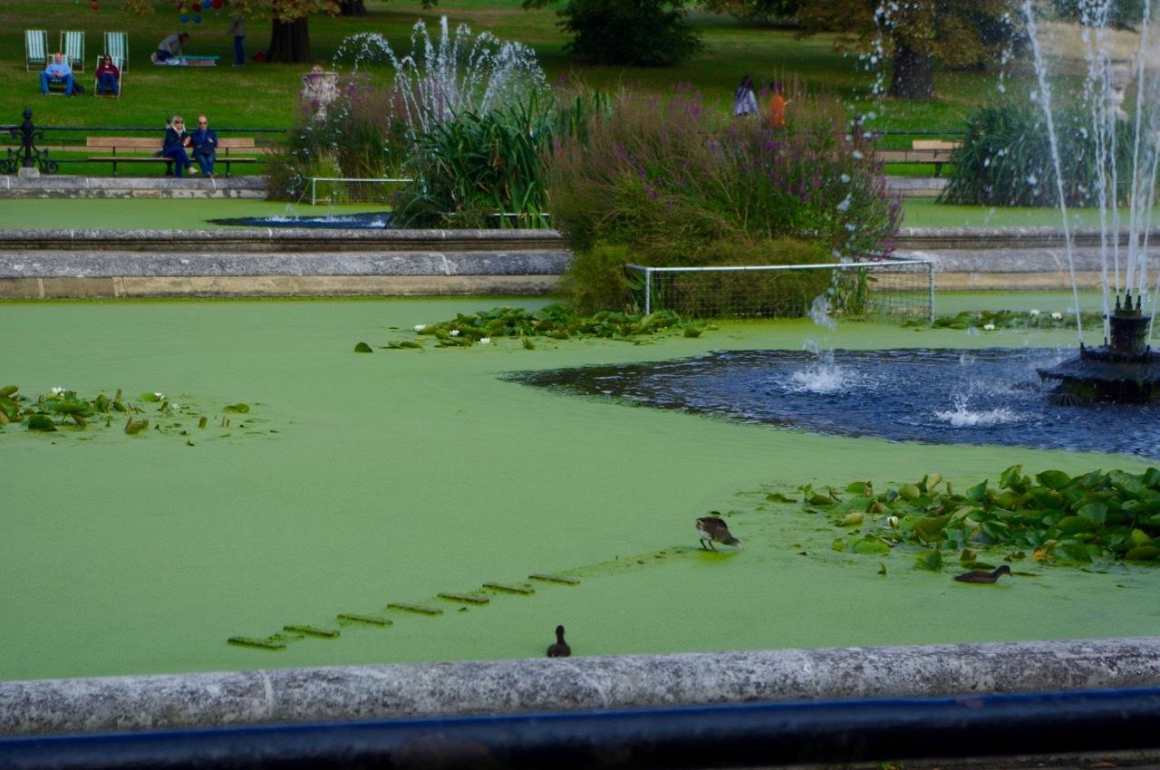 楽しみ盛りだくさん、土曜日のケンジントン・ガーデンズ_e0114020_17073757.jpg