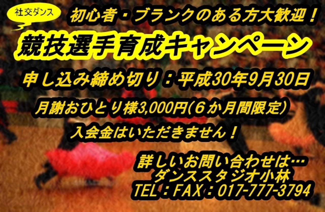f0061220_17030586.jpg