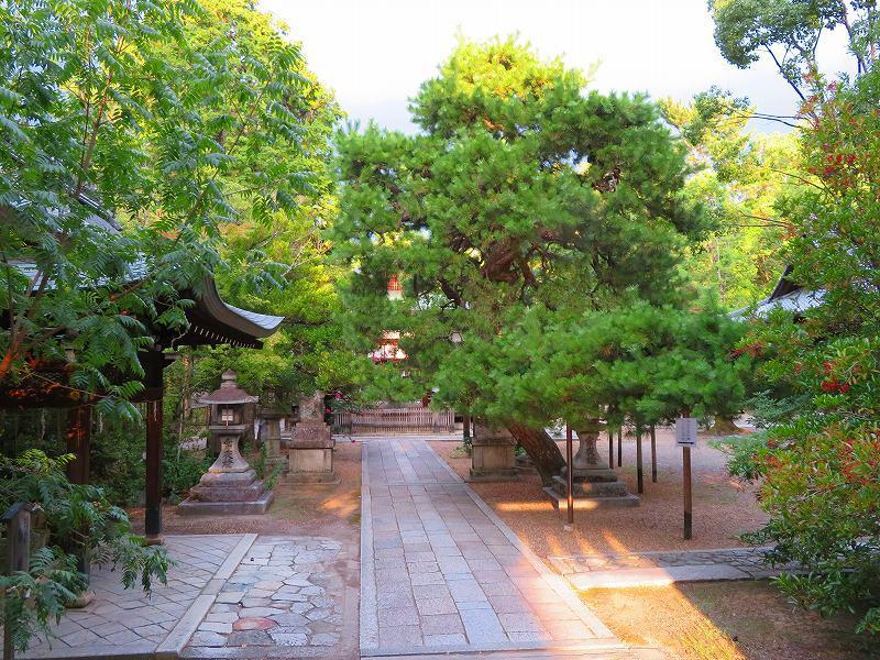 上御霊神社(京都)20190824_e0237645_10344253.jpg