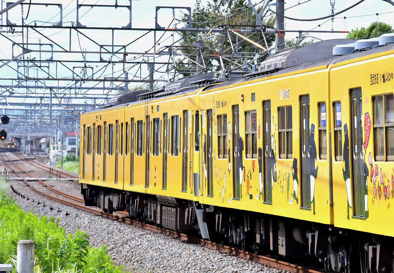 2018年西武電車図鑑(2)新宿線_a0251146_23544264.jpg