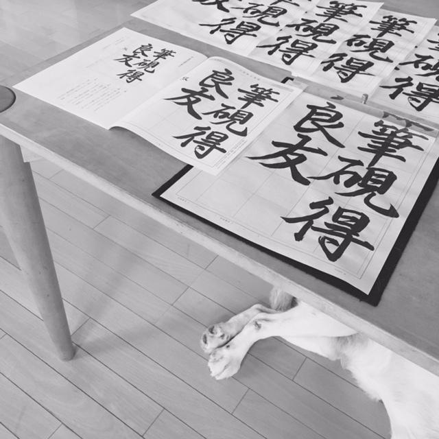 calligraphy   書きたい文字を選んで_a0165160_17585309.jpg