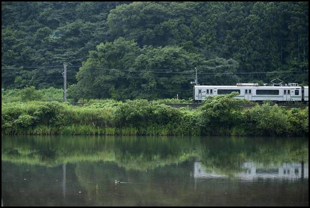白石川物語・・・雨の朝_e0271864_18422232.jpg