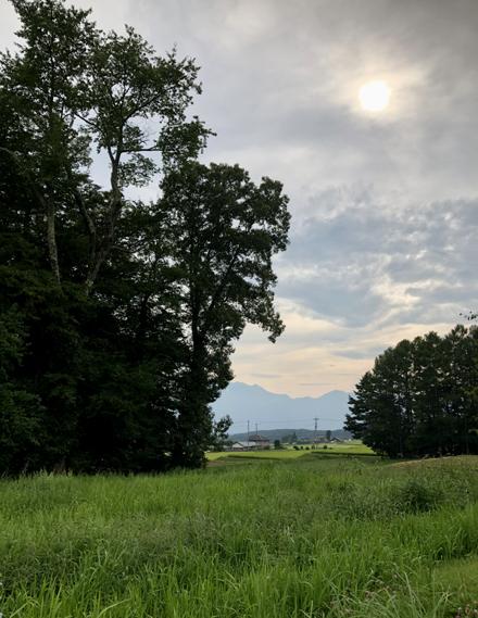 夏の八ヶ岳へ_b0183404_19333078.jpg