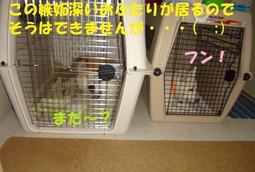 f0121712_00112056.jpg