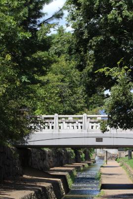 京都市中京区_b0186148_17483981.jpg