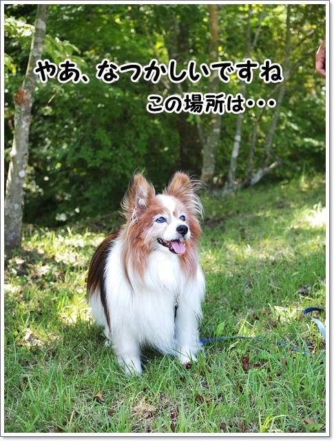 d0013149_00404125.jpg