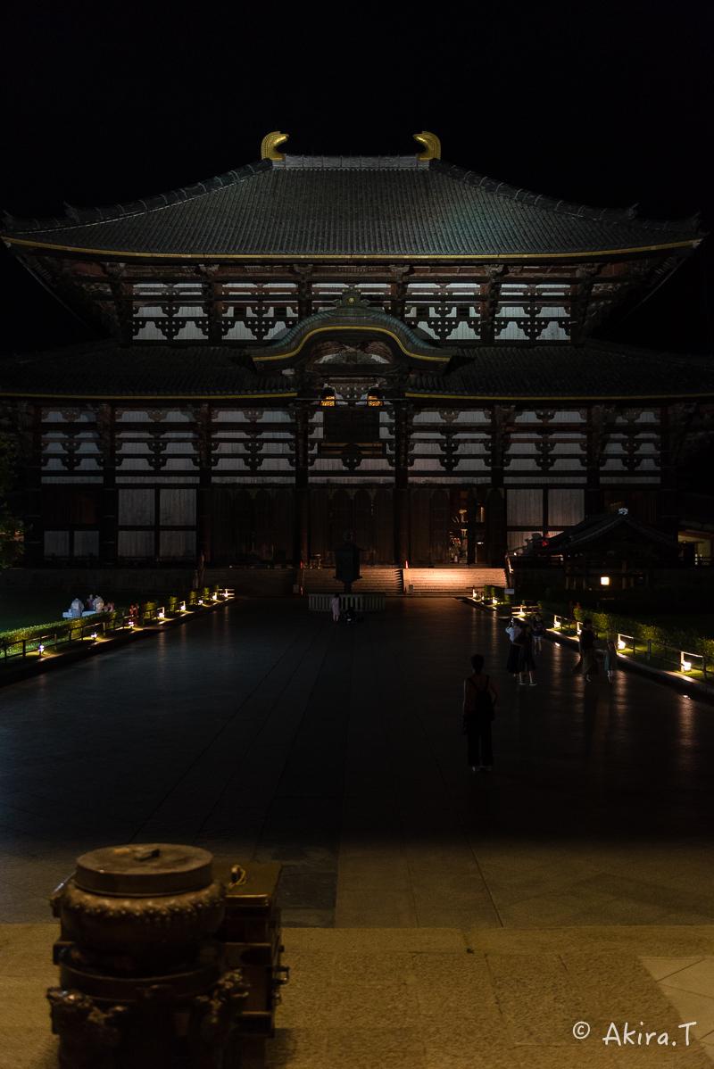 東大寺..._f0152550_21383688.jpg