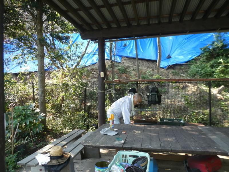 イベントの準備:テント張り・・・うみべの森_c0108460_16411438.jpg