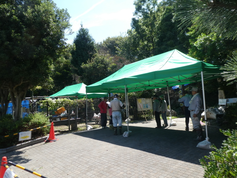 イベントの準備:テント張り・・・うみべの森_c0108460_16482901.jpg