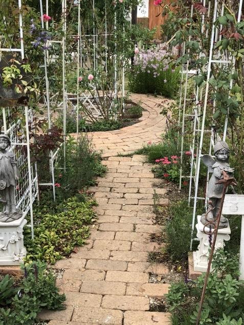 8月末の庭「バラ`ラ・フランス'が綺麗に咲いています」_a0243064_11565619.jpg