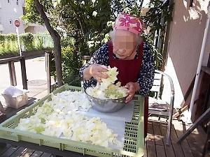 干し野菜 作ってます!_e0116086_17243264.jpg