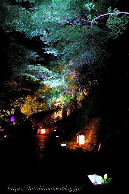 かまくら 長谷の灯かり 長谷寺_f0374092_21415422.jpg