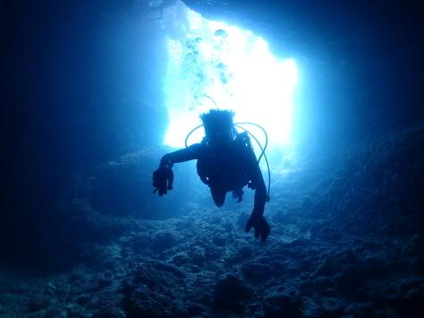 8月31日8月最後はマクロダイブからジンベエ、青の洞窟まで!!_c0070933_21280787.jpg