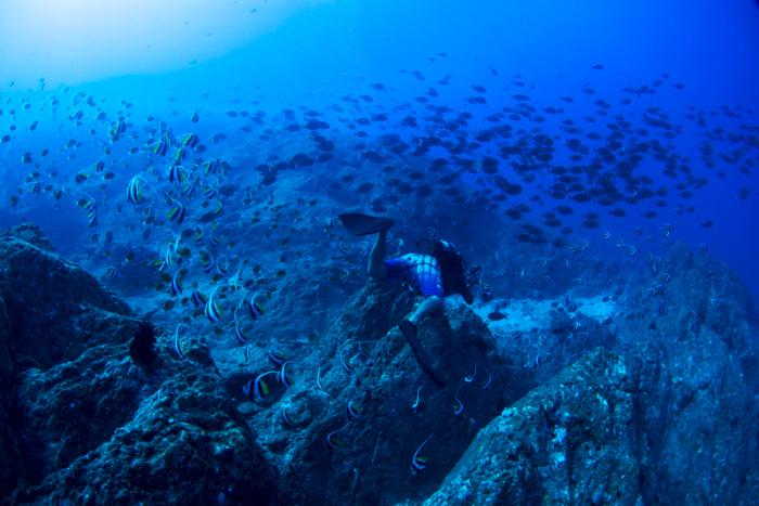 こんなに青い海で、_b0186442_22054275.jpg