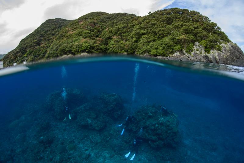 こんなに青い海で、_b0186442_22054293.jpg