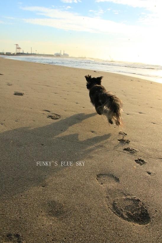 さよなら夏umi2018・Ⅷ (きゃあ♪きゃあ♪)_c0145250_09350912.jpg
