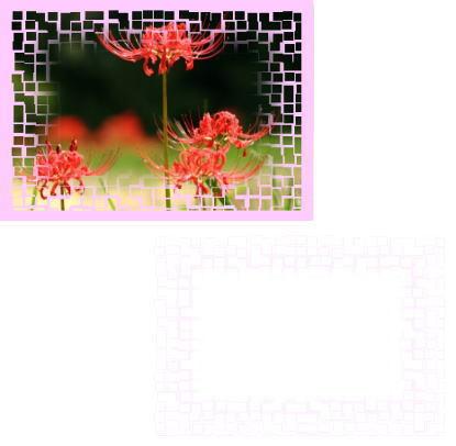 d0070316_14543981.jpg