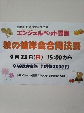 秋のお彼岸合同法要_b0308135_16374140.jpg