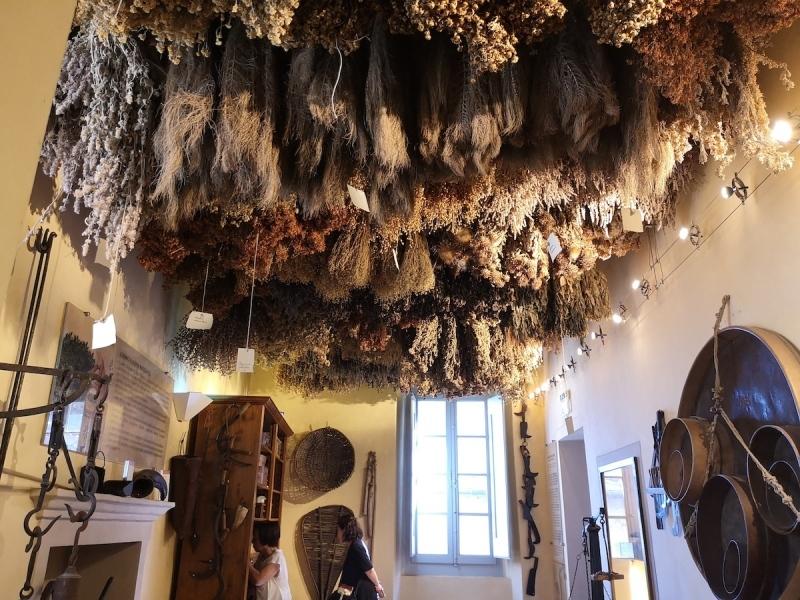 サンセポルクロのハーブ博物館へ_f0106597_05131304.jpg