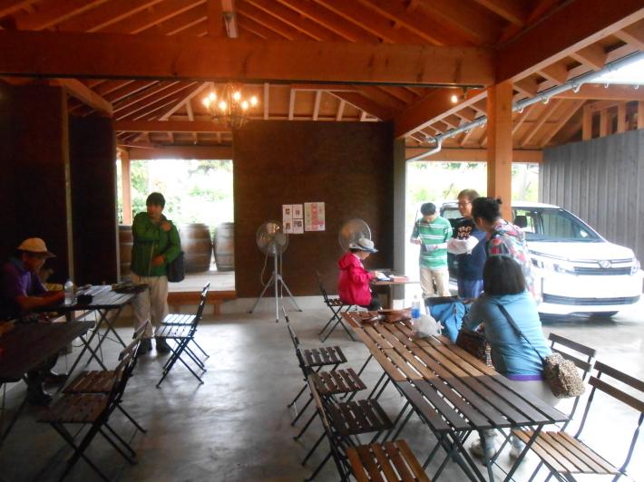 シャルドネの収穫、甲州市塩山の奥野田ワイナリーのぶどう畑に行ってきました!_a0095931_13304017.jpg