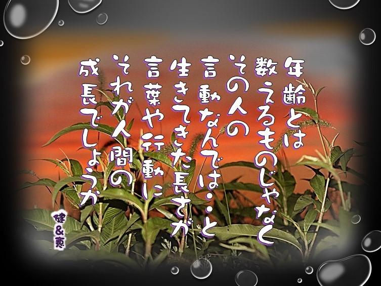 f0214467_10132597.jpg