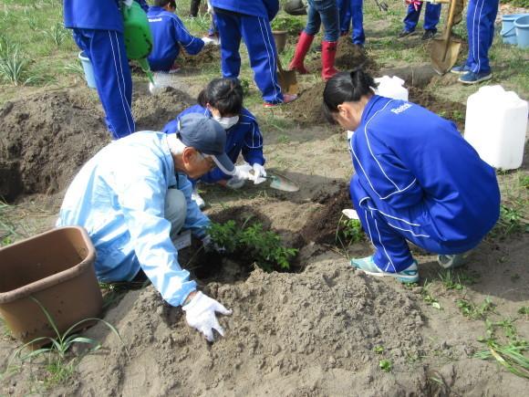 石狩中学校 環境学習_f0354435_15190368.jpg