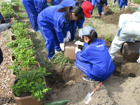 石狩中学校 環境学習_f0354435_15200644.jpg