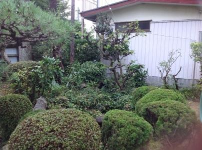 庭木剪定_c0186441_19073077.jpg