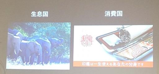わたしと動物園_e0272869_11104790.jpg