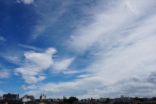 台風21号に伴う臨時休業のお知らせ_d0095305_11024285.jpg