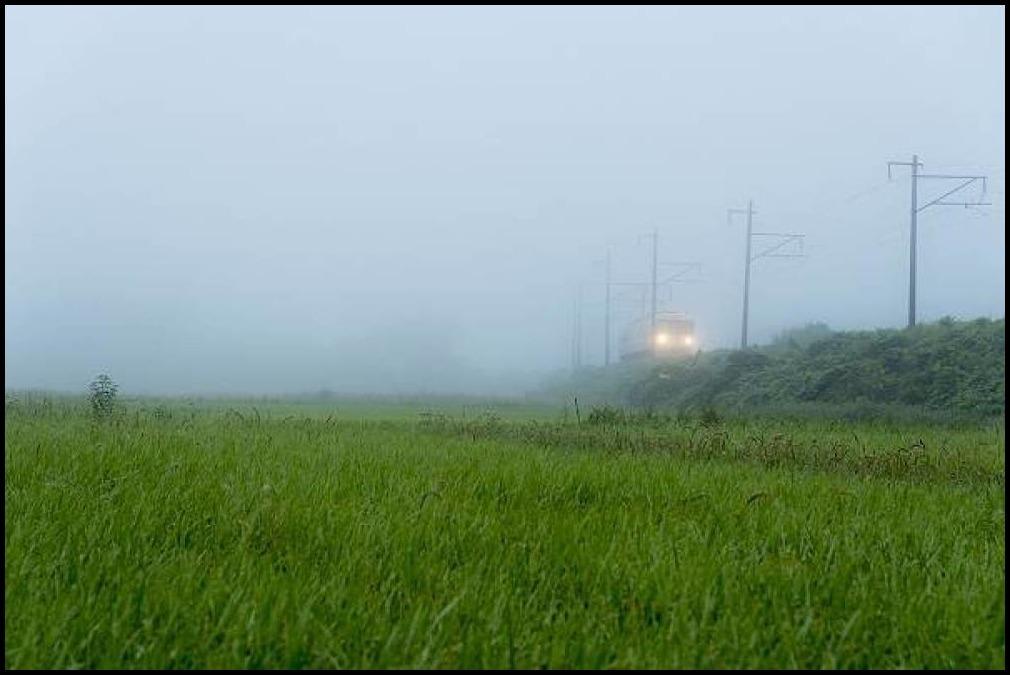 阿武隈急行・・・霧の中から_e0271864_06471886.jpg