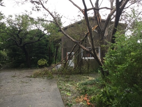 台風21号_d0141987_16235134.jpeg