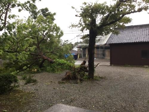 台風21号_d0141987_16491759.jpeg