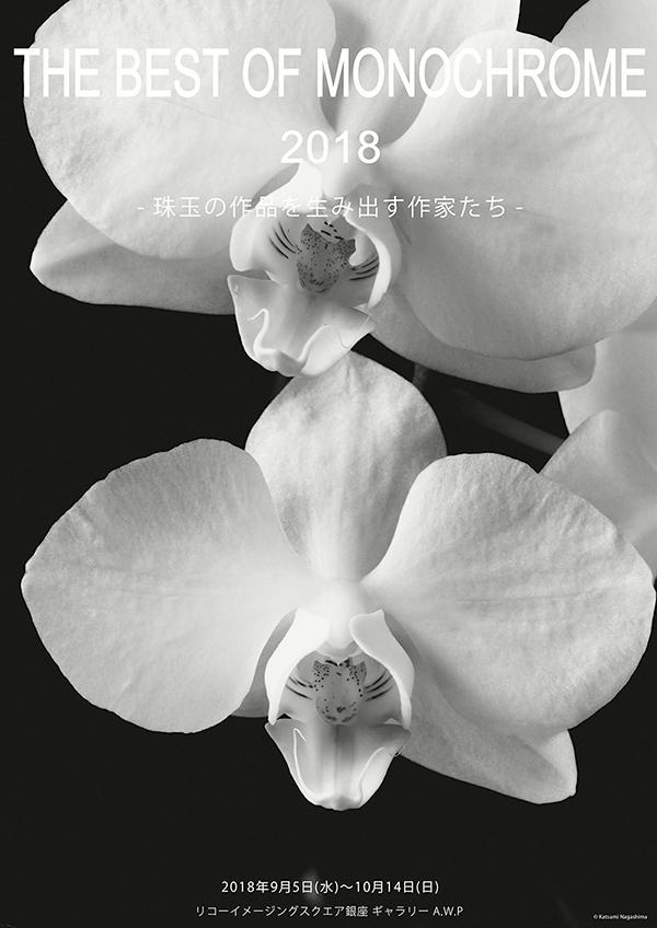 THE BEST OF MONOCHROME 2018「珠玉の作品を生み出す作家たち」最終日。_b0194208_23260369.jpg