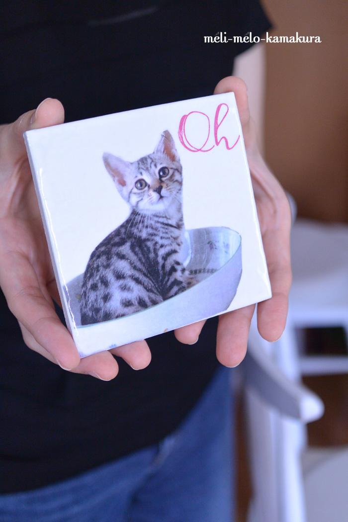 ◆【レッスンレポート】愛ネコちゃんがツヤツヤタイルに♪_f0251032_17235742.jpg