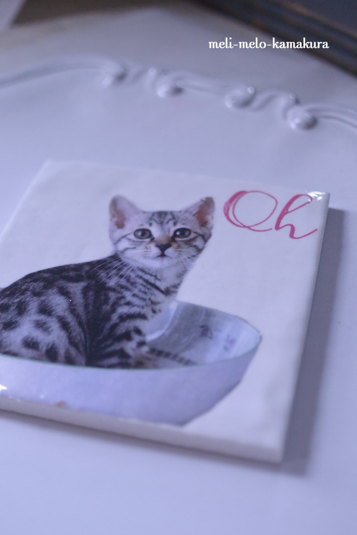 ◆【レッスンレポート】愛ネコちゃんがツヤツヤタイルに♪_f0251032_17262439.jpg