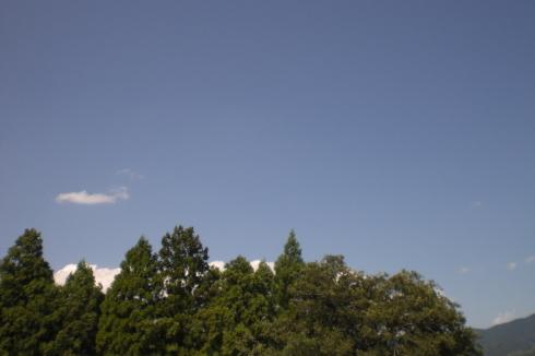 台風_d0178056_17431432.jpg