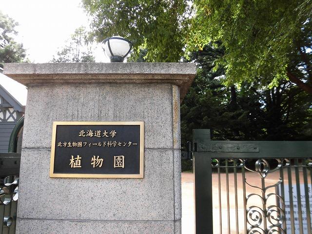 2018年8月 LCCで行く札幌(8) 北海道大学 植物園