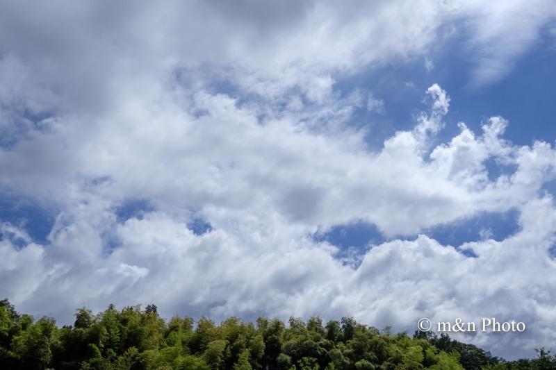 台風一過_e0321360_02162789.jpg