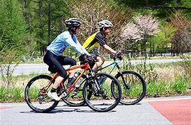 サーキットトレーニングと自転車でシェイプアップを目指す_b0179402_11595062.png