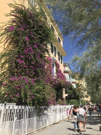 モンテロッソの街歩き_a0136671_00043309.jpeg
