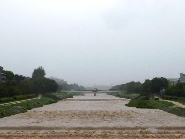 雨の土曜日_e0230141_09181062.jpg