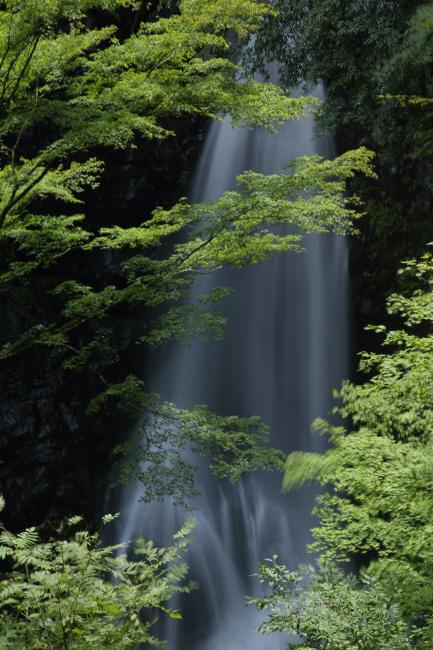 清涼に 小中(こなか)大滝 _a0357206_20530007.jpg