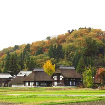 荻の家と島の家がテレビで放映されました。_c0195909_09522389.jpg