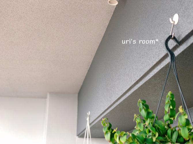 天井からのインテリアグリーンの吊るし方について。_a0341288_00233737.jpg